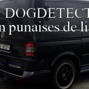 Détection canine punaises de lit en Suisse