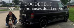 Read more about the article Détection canine punaises de lit en Suisse